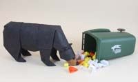 Black bear trash.jpg